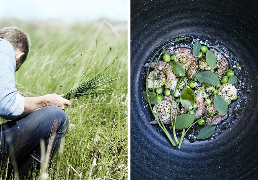 Marie Louise Munkegaard; Photographer; Kadeau, Kadeau Bornholm, Nicolai Nørregaard, Madfotografi, Foodphotography, Scandinavian foodphotography, Nordic, Copenhagen; Denmark